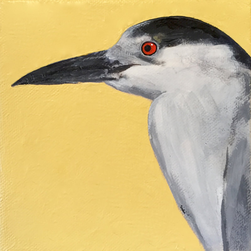 Black-Crowned Night-Heron, acrylic on canvas, 5 in x 5 in