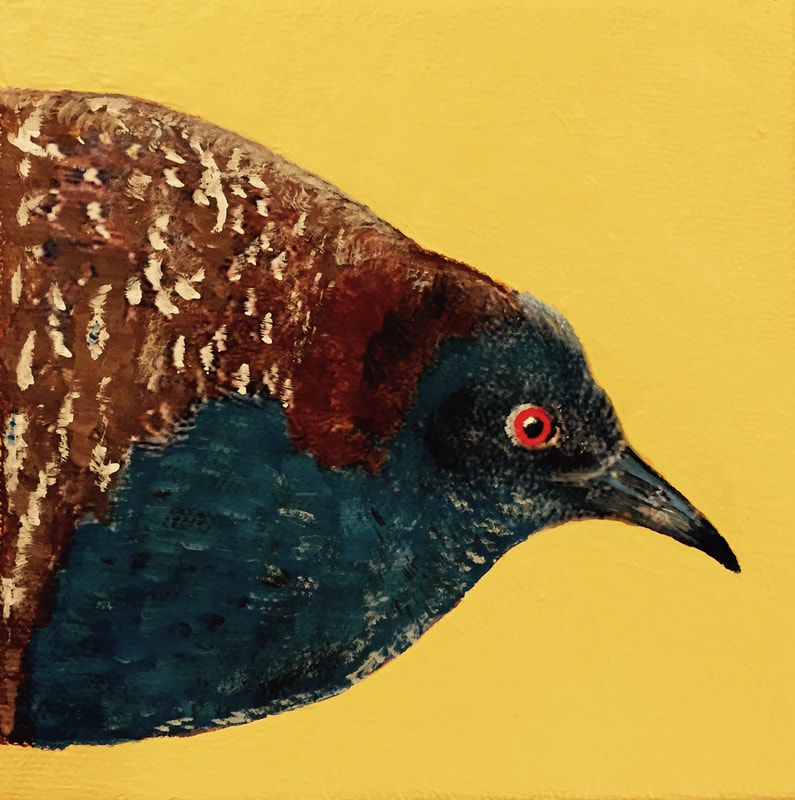 Black Rail, acrylic on canvas, 5 in x 5 in