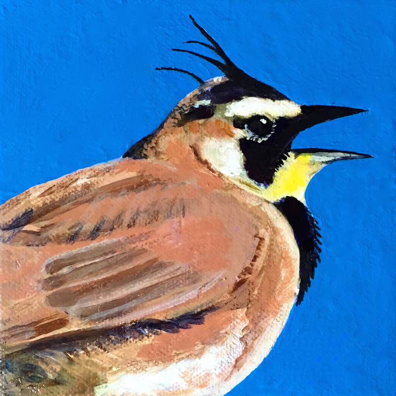 Horned Lark, acrylic on canvas, 5 in x 5 in
