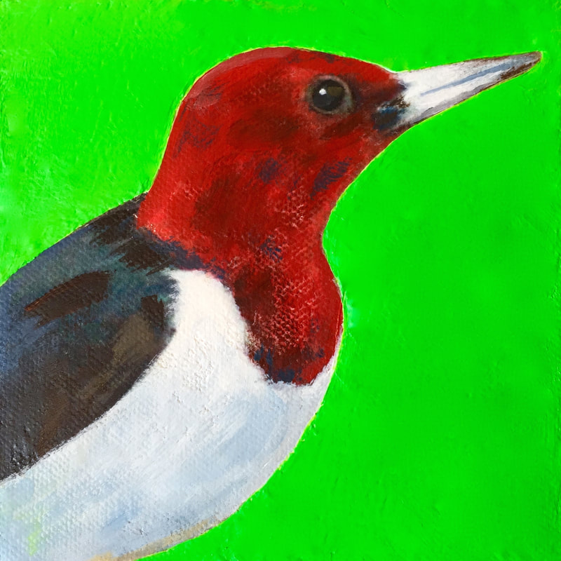 Red-Headed Woodpecker, acrylic on canvas, 5 in x 5 in