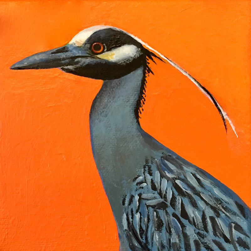 Yellow-Crowned Night-Heron, acrylic on canvas, 5 in x 5 in